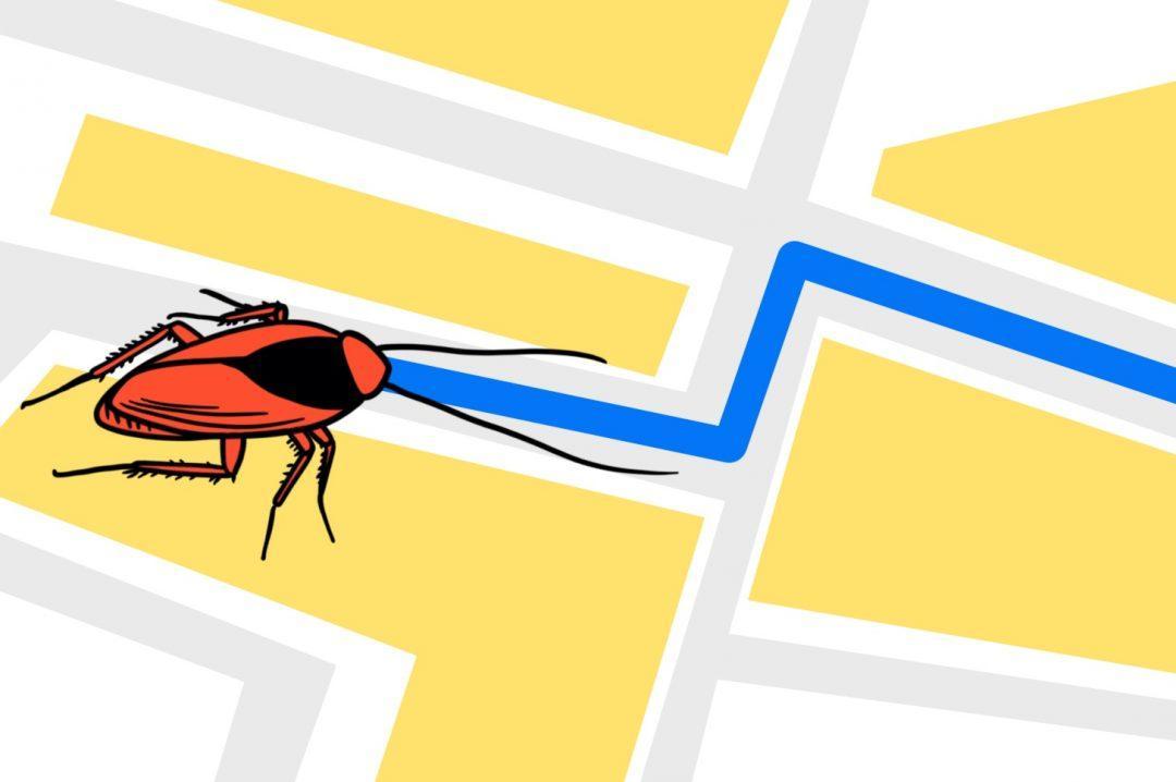 Задача про соседских тараканов