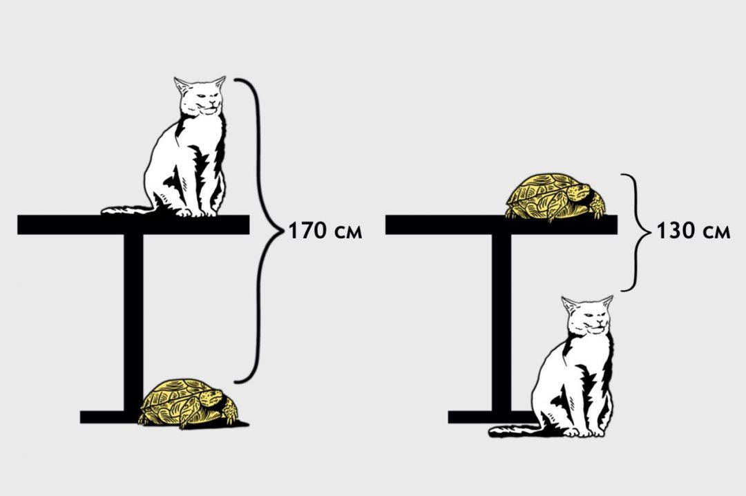 Какой высоты стол?