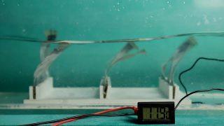 Сделали подводные генераторы энергии, которые похожи на водоросли